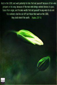 Psalms 37:7-9