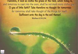 Matthew 6:30,34