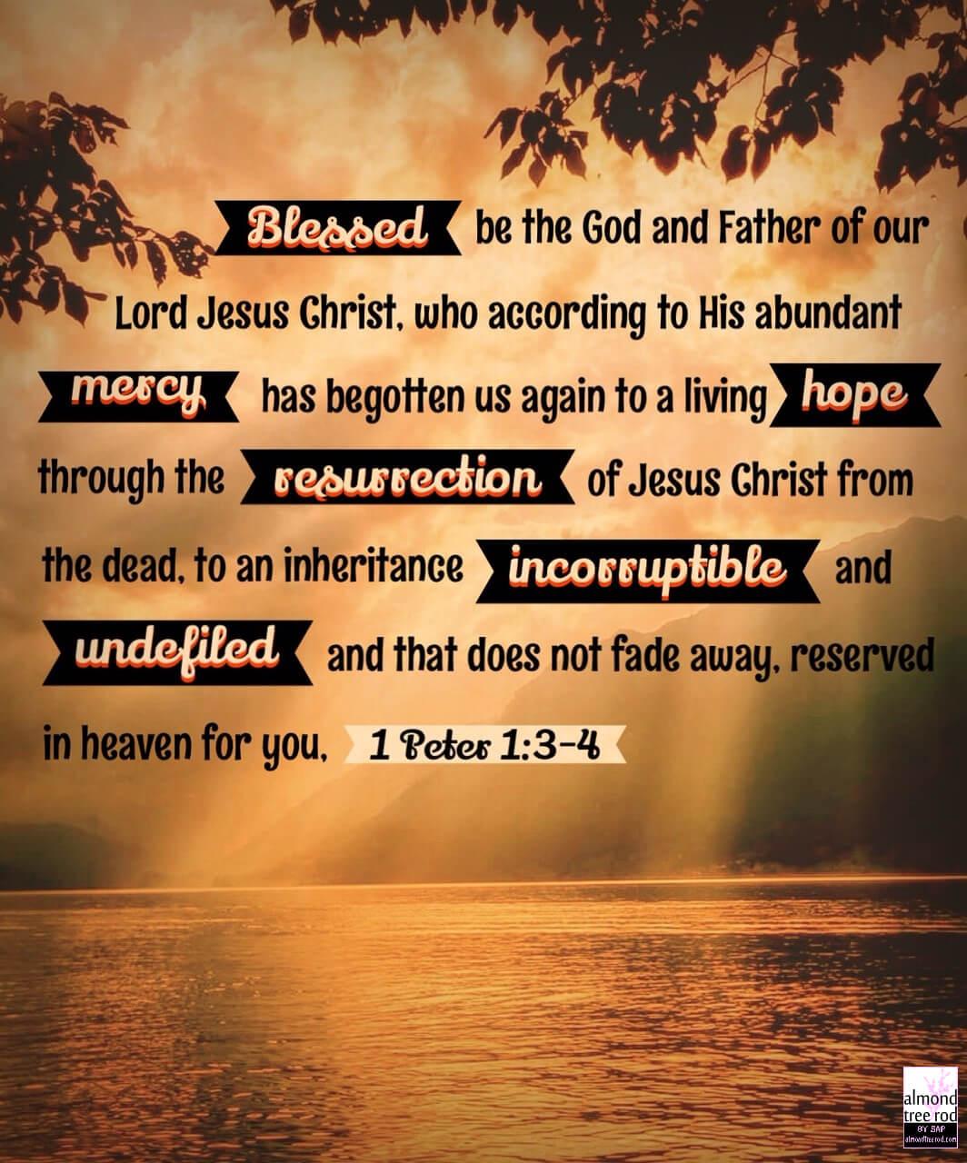 1 Peter 1:3-4