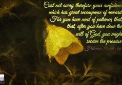 Hebrews:10-35-36